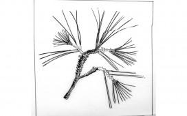 dessins-2-912x570